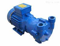 塑机配套2BV真空泵