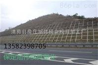 生态防护植草护坡模具畅销全国