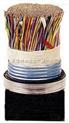 HYA22阻燃电缆;全新ZR-HYA22通信电缆厂 HJV
