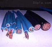 无卤低烟阻燃电缆WDZ-HYA_WDZ-HYAT_WDZ-HYA23_WDZ