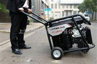 发电电焊两用机YT250A