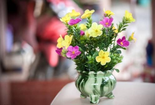 将废旧塑料瓶改造成实用美观的装饰花瓶,还细心地教大家制作康乃馨.